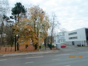 IMG_2751.jpg
