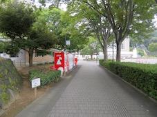 IMG_1149.jpg