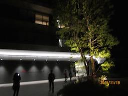 IMG_6572.jpg
